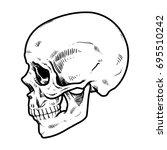 skull vector illustration ... | Shutterstock .eps vector #695510242