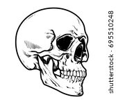skull vector illustration ... | Shutterstock .eps vector #695510248