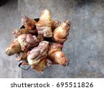 the pork legs are placed on a... | Shutterstock . vector #695511826