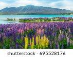 landscape at lake tekapo and...   Shutterstock . vector #695528176