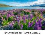 landscape at lake tekapo and... | Shutterstock . vector #695528812