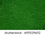 green grass texture background | Shutterstock . vector #695529652