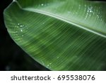 dark close up rain drops on... | Shutterstock . vector #695538076
