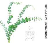 watercolor style eucalyptus... | Shutterstock .eps vector #695544088
