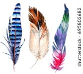 watercolor bird feather from... | Shutterstock . vector #695802682