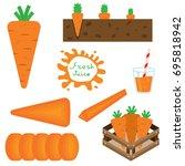 set of carrots vector... | Shutterstock .eps vector #695818942