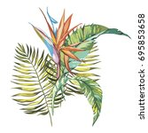 tropical flowers strelitzia...   Shutterstock .eps vector #695853658