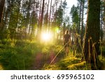 young woman walking in forest... | Shutterstock . vector #695965102