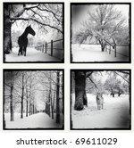 Monochrome Picture Of A Winter...