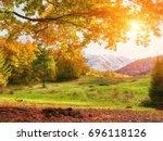 background texture of yellow... | Shutterstock . vector #696118126