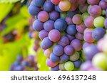 Multicolor Wine On Green Grape...