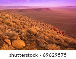 View Over The Dry Karoo...