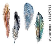 watercolor bird feather from... | Shutterstock . vector #696297955