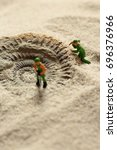 Small photo of Miniature model builders revealing Ammonite fossil in sand