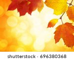 autumn leaves on a blurred... | Shutterstock . vector #696380368