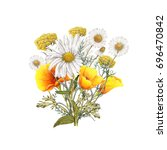 watercolor isolated bouquet of... | Shutterstock . vector #696470842