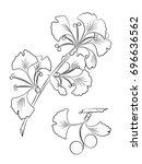 ginkgo biloba in contour style. ... | Shutterstock .eps vector #696636562