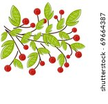 Branch with red fruits and green leaves. Spring vector painting - stock vector