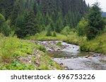 spruce forest in the ukrainian... | Shutterstock . vector #696753226