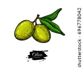 olive branch. hand drawn vector ...   Shutterstock .eps vector #696778042