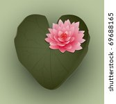 Heart Shaped Lily Pad And Wate...