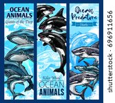 ocean animal and sea predator... | Shutterstock .eps vector #696911656