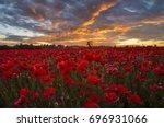 Poppy Meadow In The Beautiful...