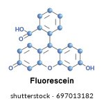 fluorescein is a manufactured... | Shutterstock .eps vector #697013182