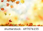 falling autumn maple leaves... | Shutterstock . vector #697076155