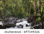 rainforest on the boiling pot... | Shutterstock . vector #697149226