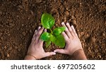 save plant concept close up... | Shutterstock . vector #697205602