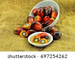close up of fresh oil palm... | Shutterstock . vector #697254262
