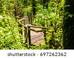 walkway in doi inthanon...   Shutterstock . vector #697262362