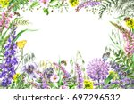 hand drawn wild flowers and... | Shutterstock . vector #697296532