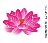 Water Lily Flower  Isolated...