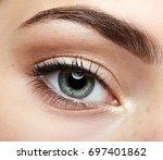 closeup macro portrait of... | Shutterstock . vector #697401862