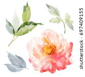 set of watercolor large peony... | Shutterstock . vector #697409155