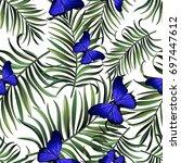 seamless tropical vector... | Shutterstock .eps vector #697447612