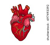 drawing of stylized human heart | Shutterstock .eps vector #697493392