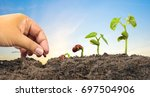 agriculture and new life... | Shutterstock . vector #697504906