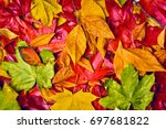Background of autumn leaves....