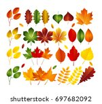 vector illustration  set of... | Shutterstock .eps vector #697682092