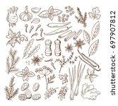 hand drawn illustrations of... | Shutterstock . vector #697907812