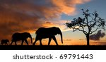 Elephant Silhouette With Red...