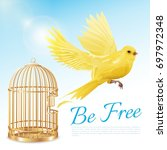 poster with canary flying from... | Shutterstock .eps vector #697972348