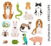 big set of different domestic... | Shutterstock . vector #698011696