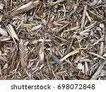 wood chips texture background...   Shutterstock . vector #698072848