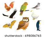 set of birds collection... | Shutterstock .eps vector #698086765