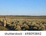 Hunter Carrying Rifle Walking...