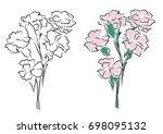 pink carnations vector outline... | Shutterstock .eps vector #698095132